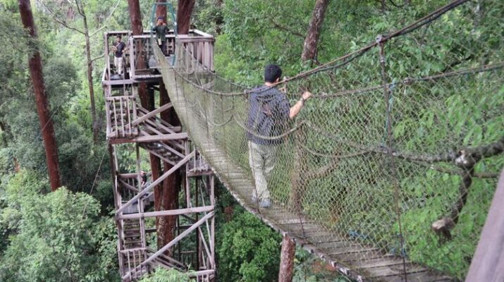 Ngerinya Jembatan Gantung Bukit Bangkirai!